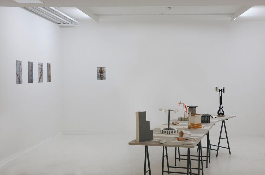 Kristin Wenzel - Display Gardens Installation Loerrach 2